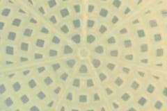 tło abstrakcyjna plama Zdjęcie Royalty Free