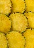 tło ananas Obraz Royalty Free