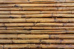 10 tło bambusowy eps ilustraci wektor Obrazy Stock