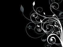 tło biel czarny kwiecisty Obrazy Royalty Free