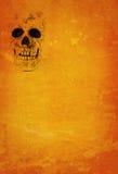 tło czaszka zdjęcia royalty free