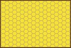 Tło honeycombs Zdjęcia Royalty Free