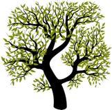 tło ilustracyjnego pojedynczy obrazu drzewny white wektor Obrazy Royalty Free