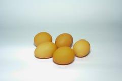 tło jajka odizolowywali biel Obrazy Stock