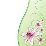 Tło karta, leluja kwiaty Obraz Stock