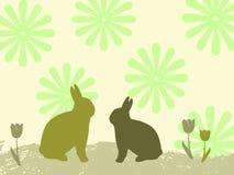 tło króliki Zdjęcia Royalty Free