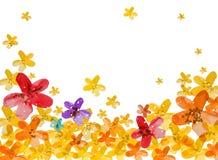 tło kwiat Fotografia Stock