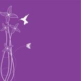 tło kwiat Obrazy Stock