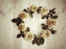 tło kwiat kwitnie rocznika Zdjęcia Stock