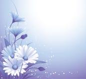 tło kwiaty Fotografia Royalty Free