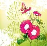 tło kwiaty Obrazy Royalty Free