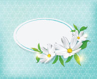tło kwiaty Obraz Stock