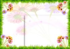 tło kwiaty grass biel Zdjęcia Stock