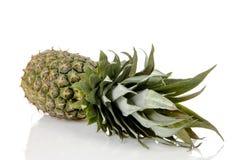 tło nad ananasowym biel Fotografia Royalty Free