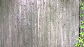 Tło, ogrodzenie stare deski, rocznika styl obrazy royalty free