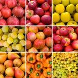 tło owoc Obraz Stock