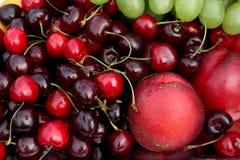 tło owoc Fotografia Stock