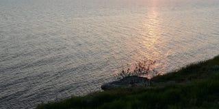 T?o seascape Ciemne sylwetki gałąź krzak stoją za wyraźnie przeciw tłu słoneczna ścieżka na obrazy stock
