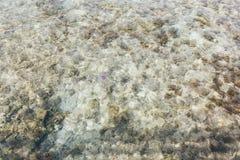 T?o strza? aqua wody morskiej powierzchnia zdjęcie royalty free