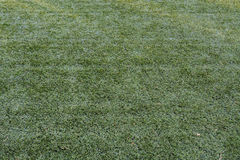 Tło sztucznej murawy zielona trawa Zdjęcie Stock