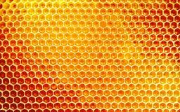 Tło tekstura i wzór honeycomb Fotografia Royalty Free