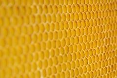 Tło tekstura i wzór sekcja wosku honeycomb Apiculture Fotografia Stock