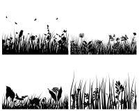 tło trawy set Obraz Stock