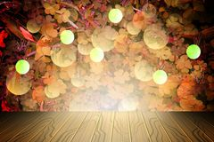 Tło trinity leafs dla StPatrick ` s dnia, fotografia royalty free