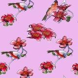 Tło tropikalni ptaki i tropikalni kwiaty akwarela royalty ilustracja