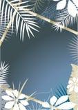 tło tropikalny Zdjęcie Royalty Free