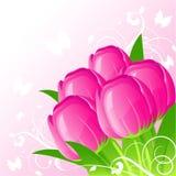 tło tulipany Ilustracji