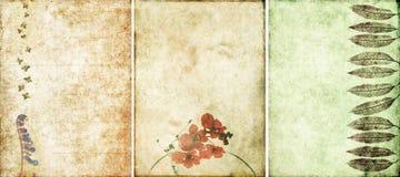 tło urocze tekstury trzy Zdjęcie Stock