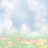 tło uroczy kwiat Zdjęcia Royalty Free