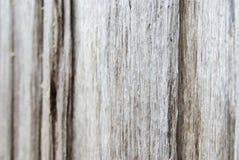 tło weathersa drewna Obrazy Royalty Free