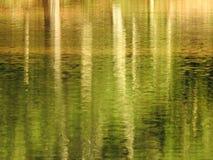 Tło wizerunek wody powierzchnia jezioro z czochrami w zmierzchu zdjęcie royalty free