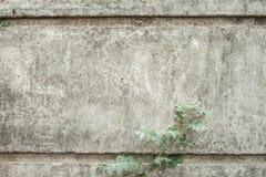 Tło wizerunku tematu cement Zdjęcia Royalty Free