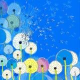 Tło z abstrakcjonistycznymi kolorowymi dandelions Obrazy Royalty Free