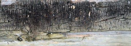 Tło z drewnianej tekstury starym ogrodzeniem Fotografia Royalty Free