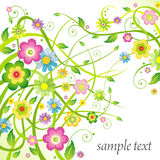 Tło z kwiatami Zdjęcia Royalty Free