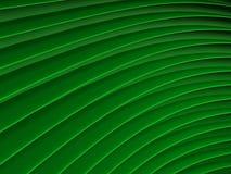Tło zielone abstrakcjonistyczne fala render Obrazy Stock