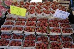 tła owoc odosobniony truskawkowy biel Zdjęcie Royalty Free