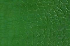 tła piegów skóry tekstura Fotografia Royalty Free