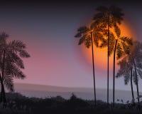 tła projekta kwiecistej noc bezszwowy lato twój Drzewka palmowe w nocy wektor Obraz Stock