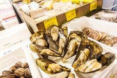 T?quio, Jap?o - 15 de janeiro de 2010: Amanhecer no mercado de peixes de Tsukiji A caixa com marisco fresco imagens de stock royalty free