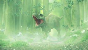 T rex,暴龙走通过一个有雾的森林的rex恐龙 免版税库存照片