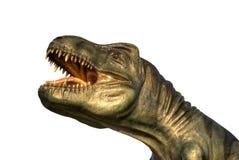 T-rex Fotos de archivo libres de regalías