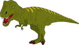 T rex. Vector - colored T Rex isolated on background Royalty Free Stock Images