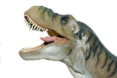 T rex. Toy on white background Royalty Free Stock Photography