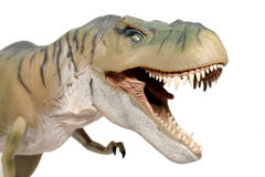 T rex. Toy on white background Royalty Free Stock Images