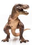 T Rex Стоковые Изображения RF